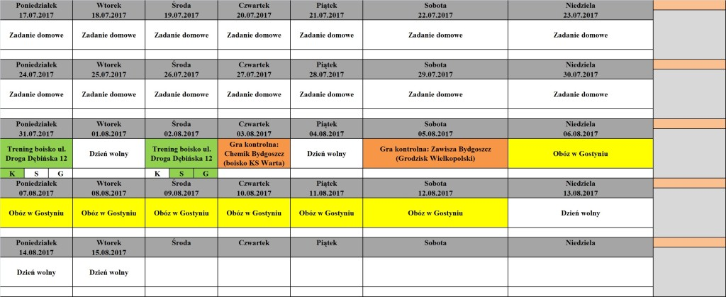 Plan organizacyjny 07-08.2017